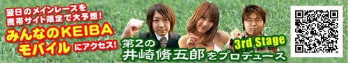 Find_syugoro_bnr_3